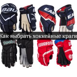 Как выбрать хоккейные краги